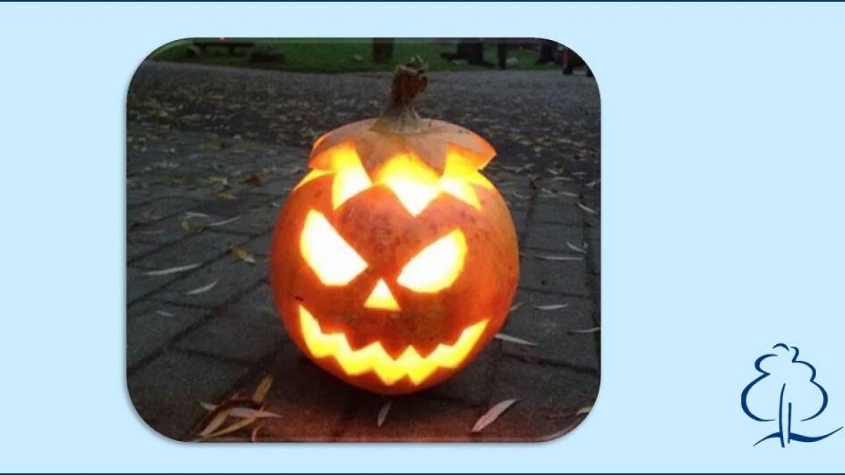 halloween-kuerbis-leuchtend_1