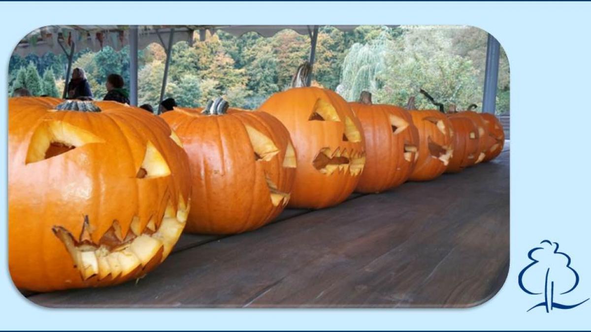 halloween-kuerbisse_1