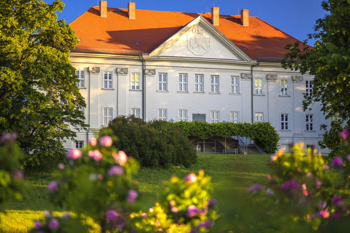 Schloss Hohenzieritz- Gartenseite