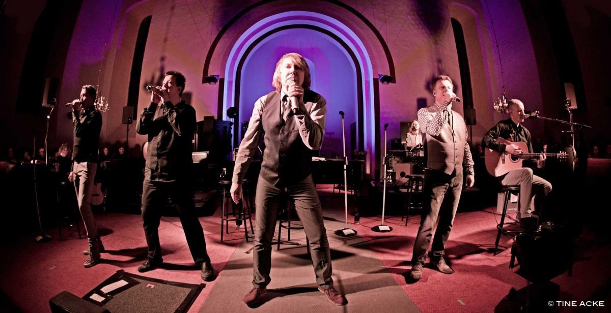 Die Prinzen im Konzert