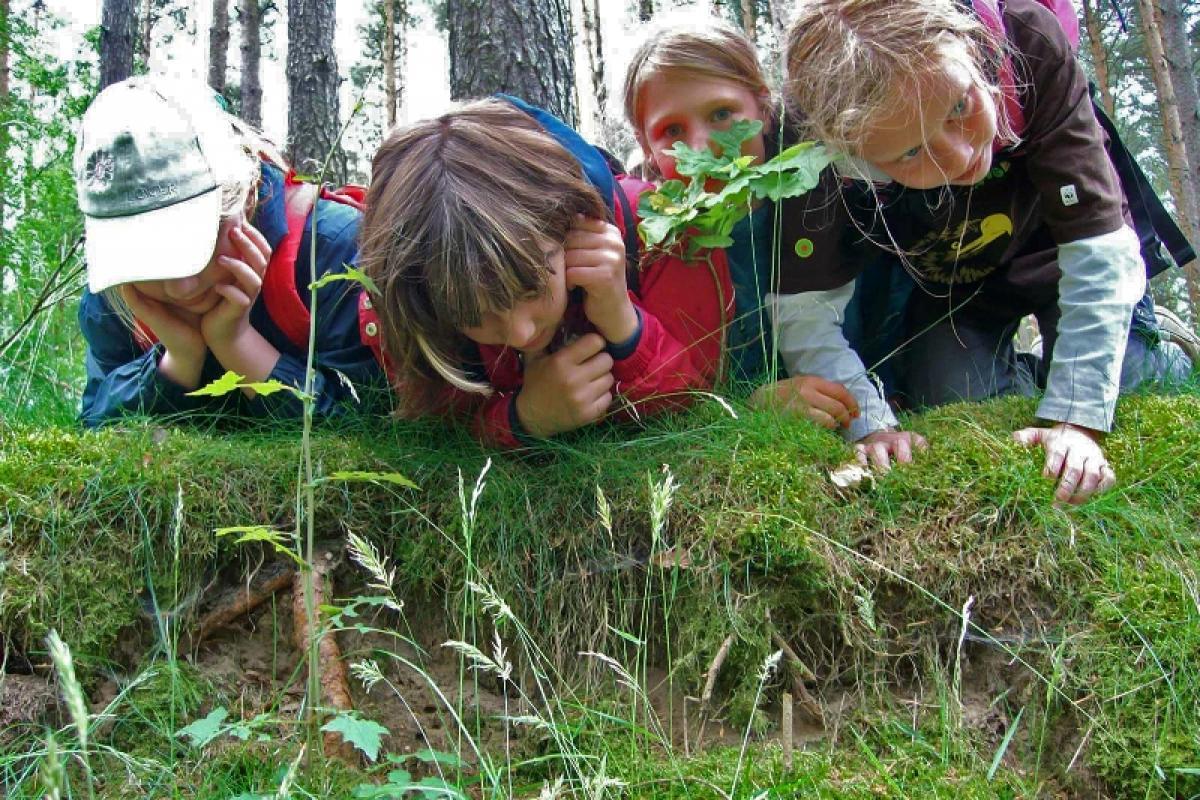 spurensuche-fuer-gross-und-klein_nationalparkamt-mueritz